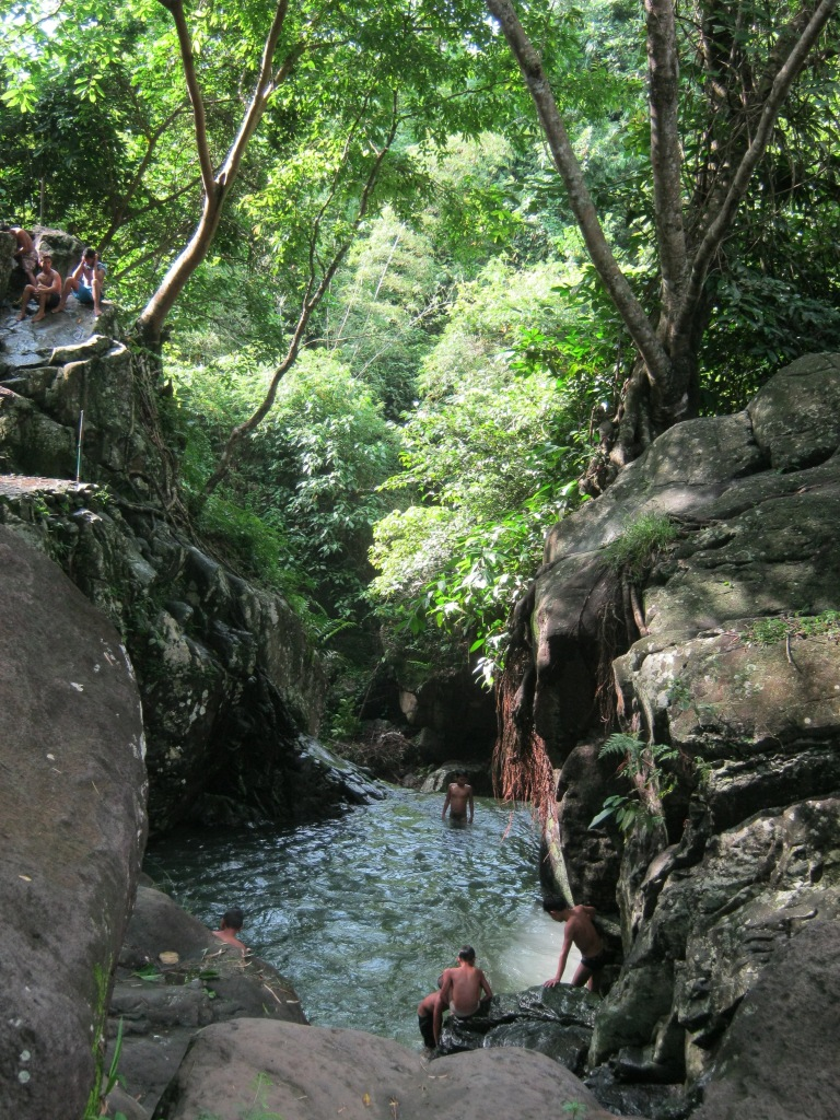 Children jump from the tree tops at a small pond on top of the 6th falls.