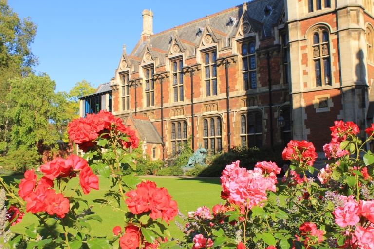 Roses at Pembroke College